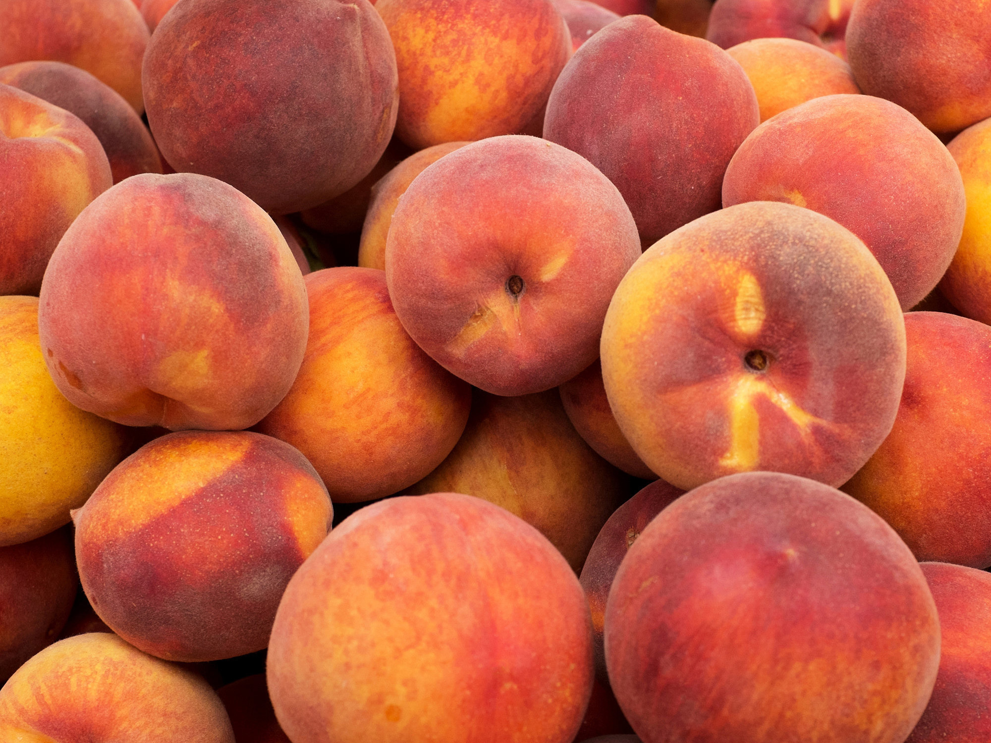 ELA FAMILY FARMS PEACHES ARE HERE.   ORDER CASES AND FLATS ONLINE