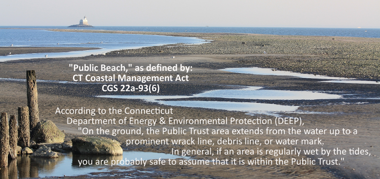 """Public Beach"" is that portion of the shoreline that is below the mean high tide elevation..."