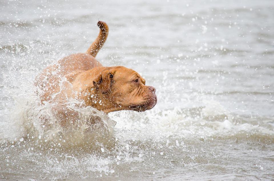 Parker: shoreside sportsman...