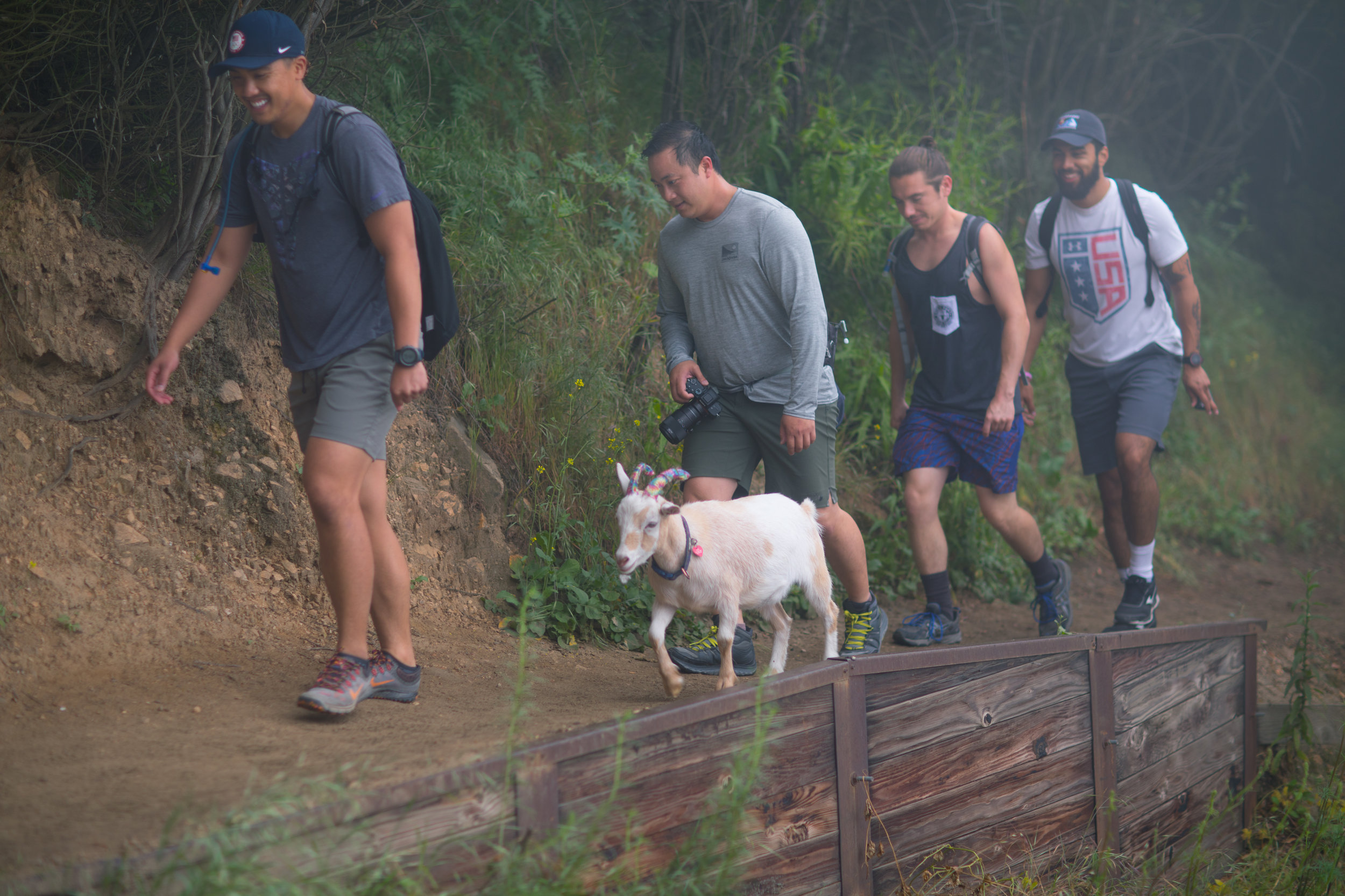 Hiking-with-PartyGoats-013.jpg