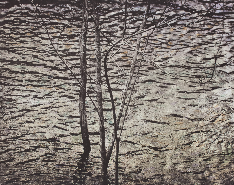 reflections in water-4.jpg