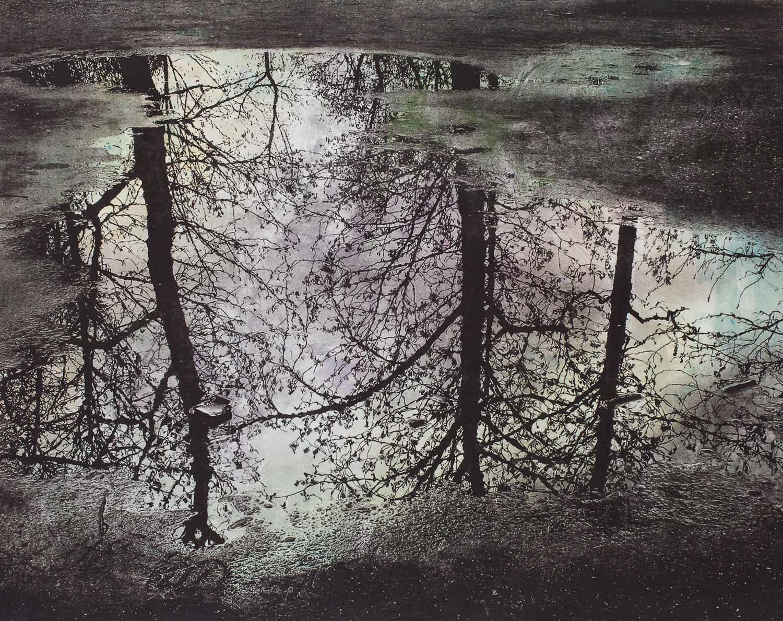 reflections in water-6.jpg