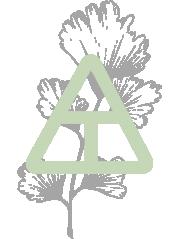 Logo_Trigon_Color.png