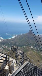 Table Mountain Lion's Head