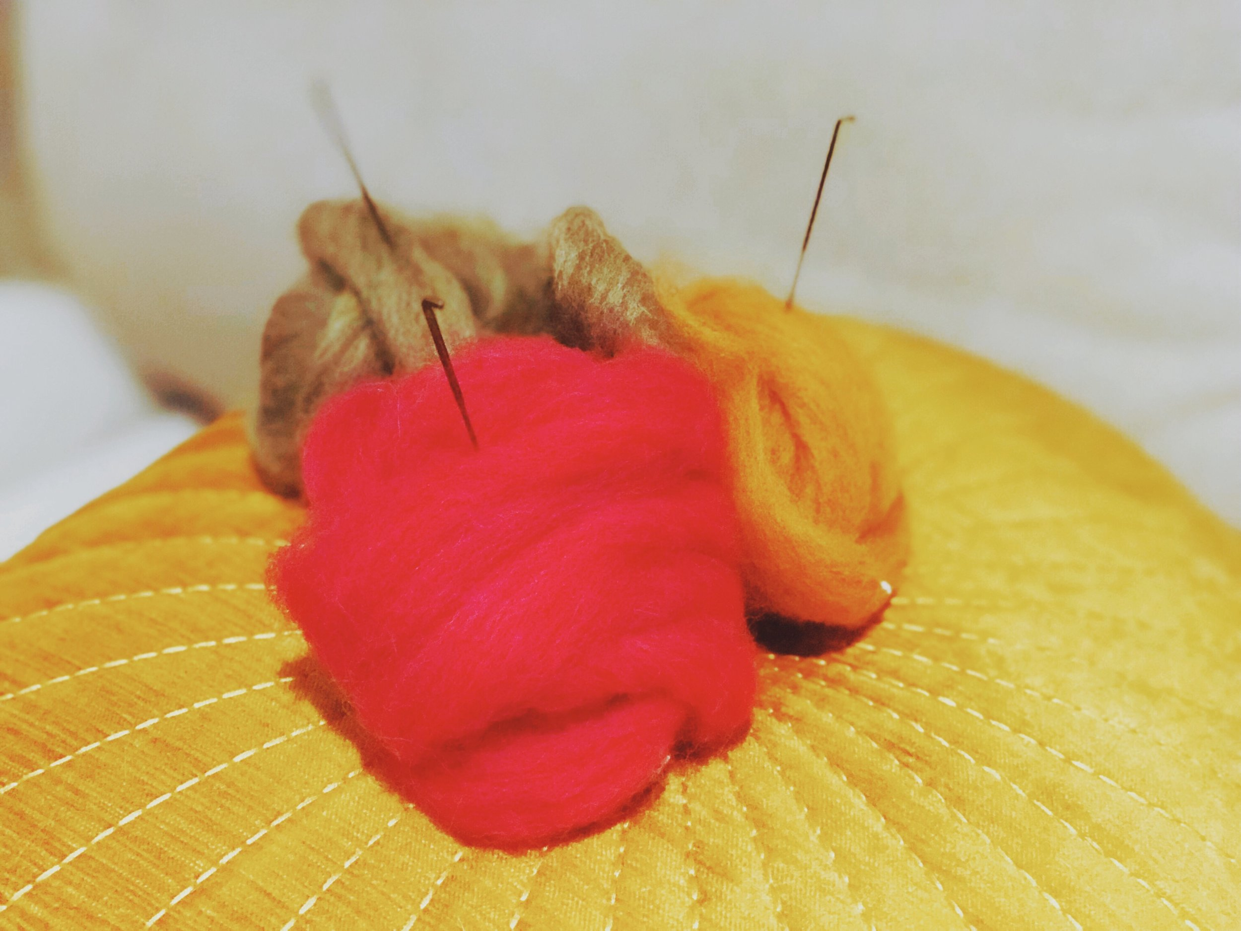 wool header.jpeg