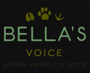 Bella's Voice