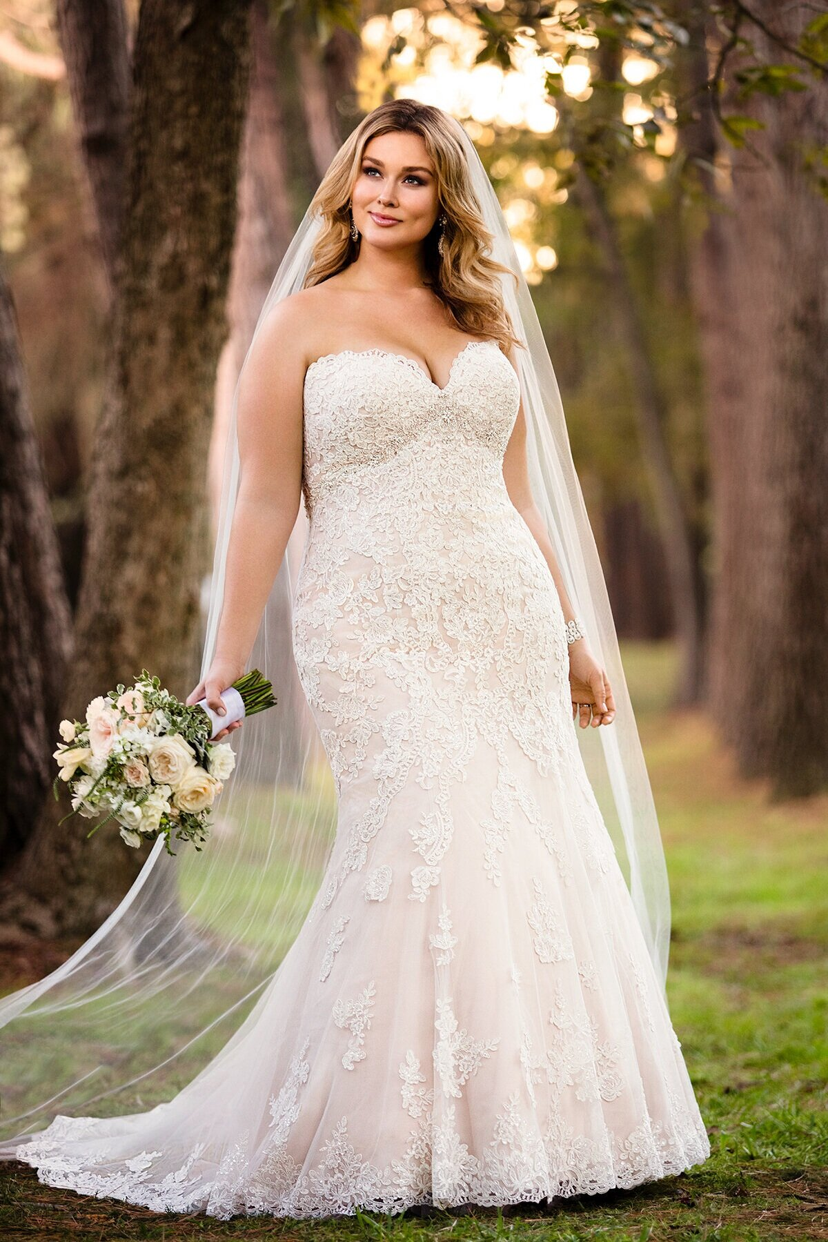 Stella York Curves $899-$1800
