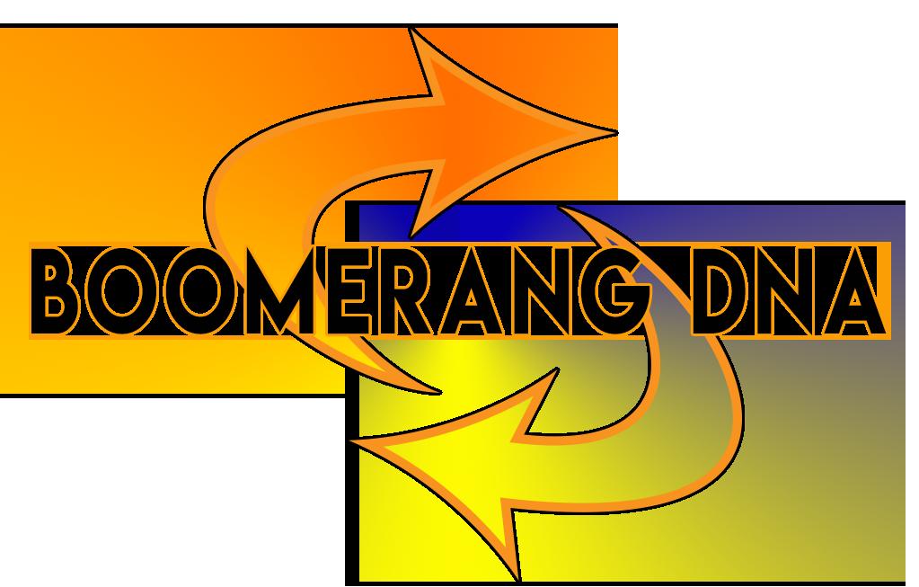 Boomerang DNA No Tagline.png