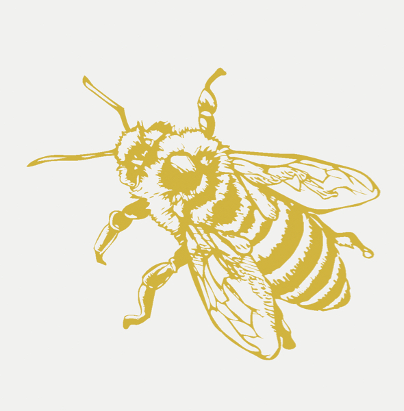 Altered Bee Graphic Web Background Color.jpg