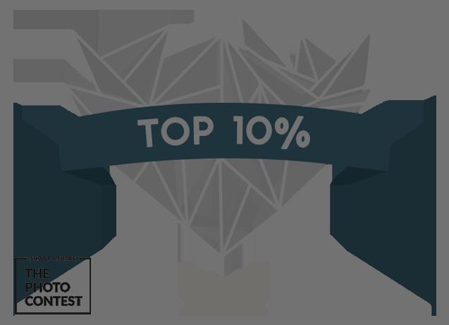 top_10_NOBACK.png