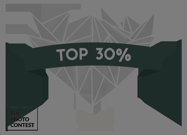 top_30_NOBACK.png
