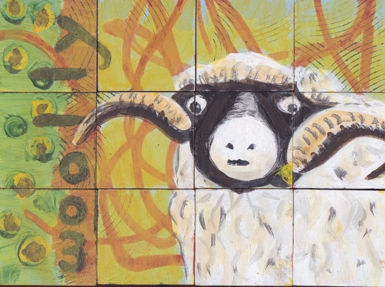 sheep72.jpeg