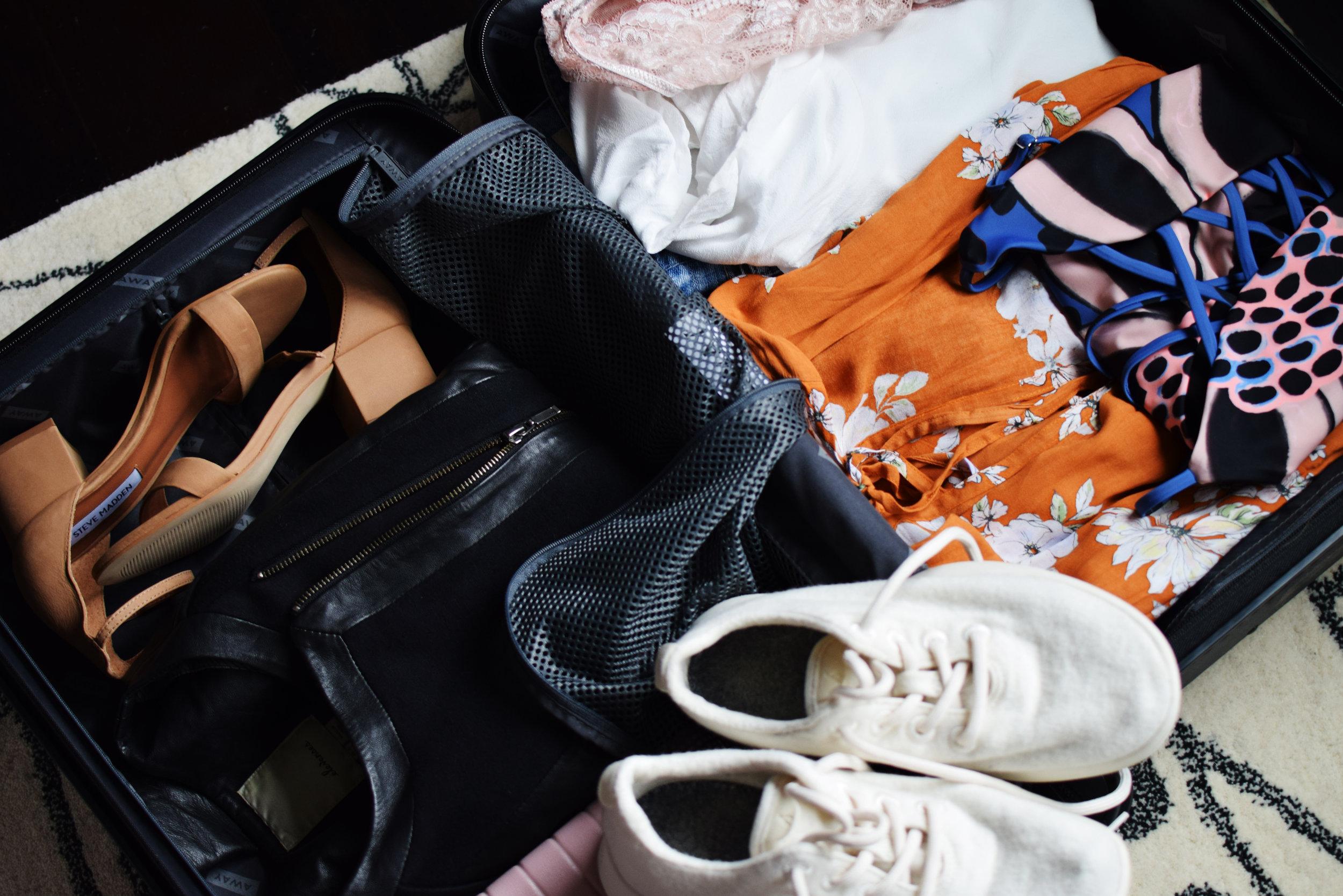 suitcase edit 6.jpg