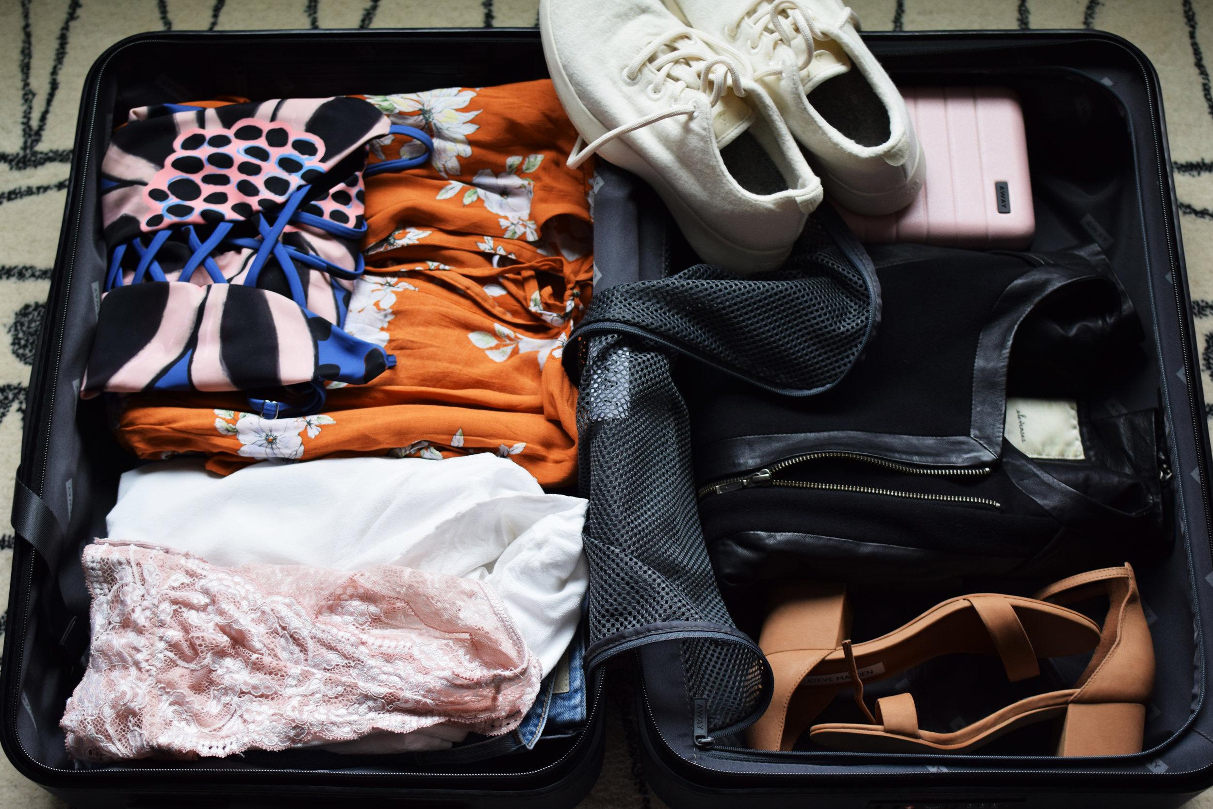 suitcase edit 7.jpg