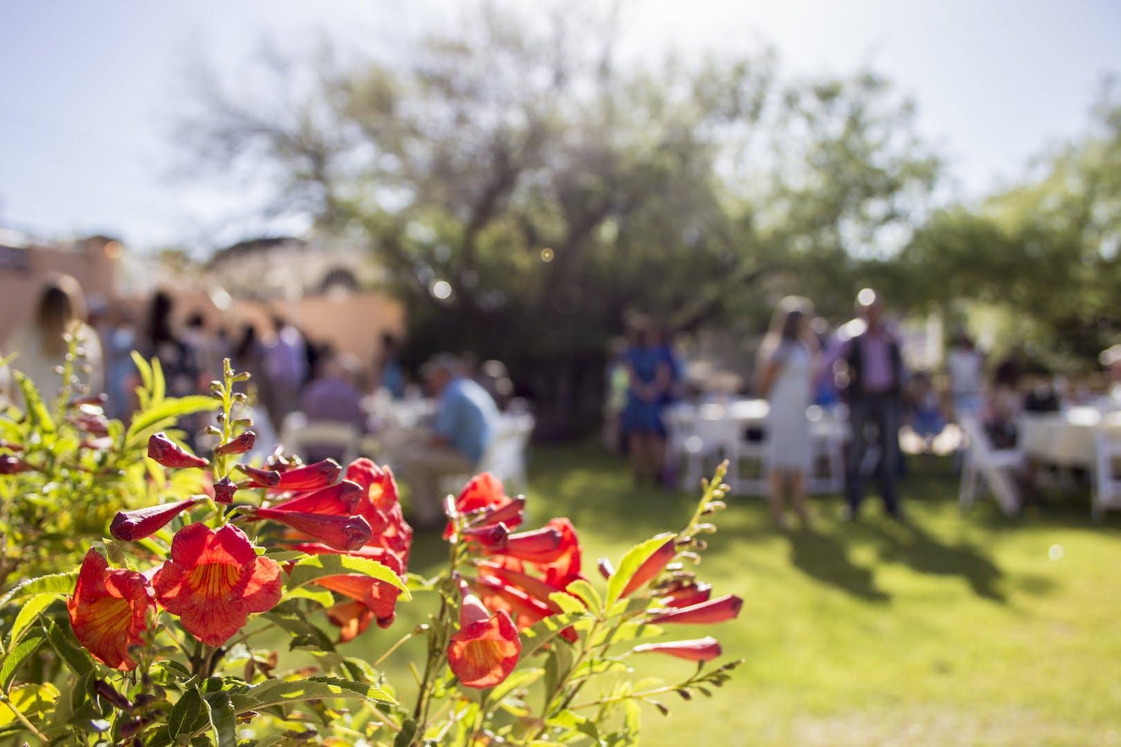 wedding_venue_tucson.jpeg