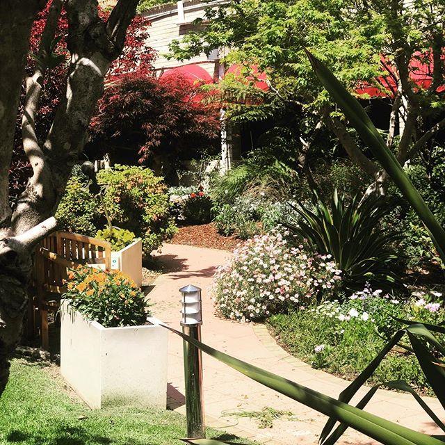 #colour #spring #gardenstyle