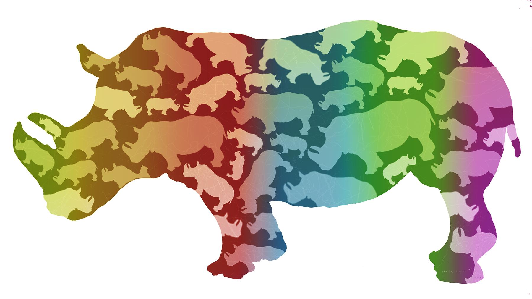 rhino color silhouette.jpg