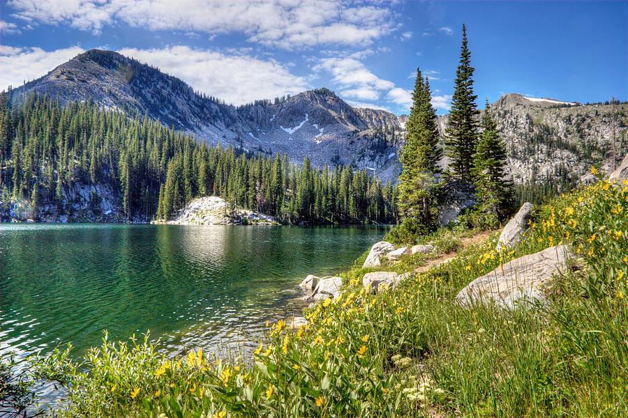wasatch-mountains-utah-utah-images.jpg