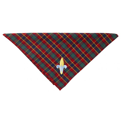 Neckerchief Tile 500x500 1.png