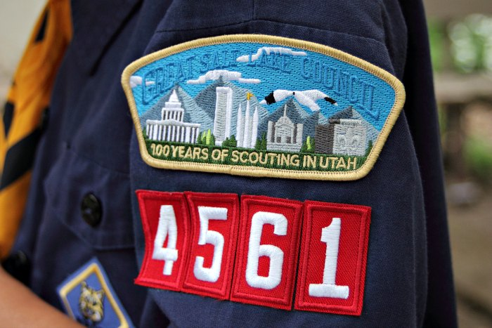 cub-scout-1-www.radmomcoolkid.com_.jpg