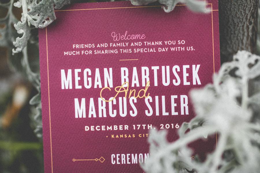 Megan_Marcus_Wedding_Blog-1-34.jpg