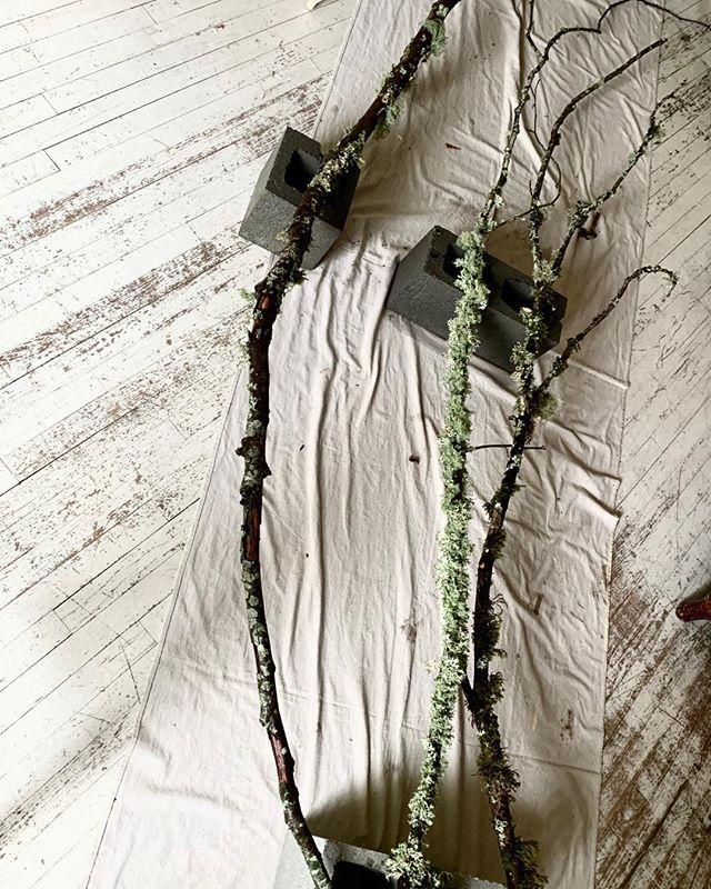 Drying foraged mossy branches  #love #forrestwedding #seattlewedding #PNWbride