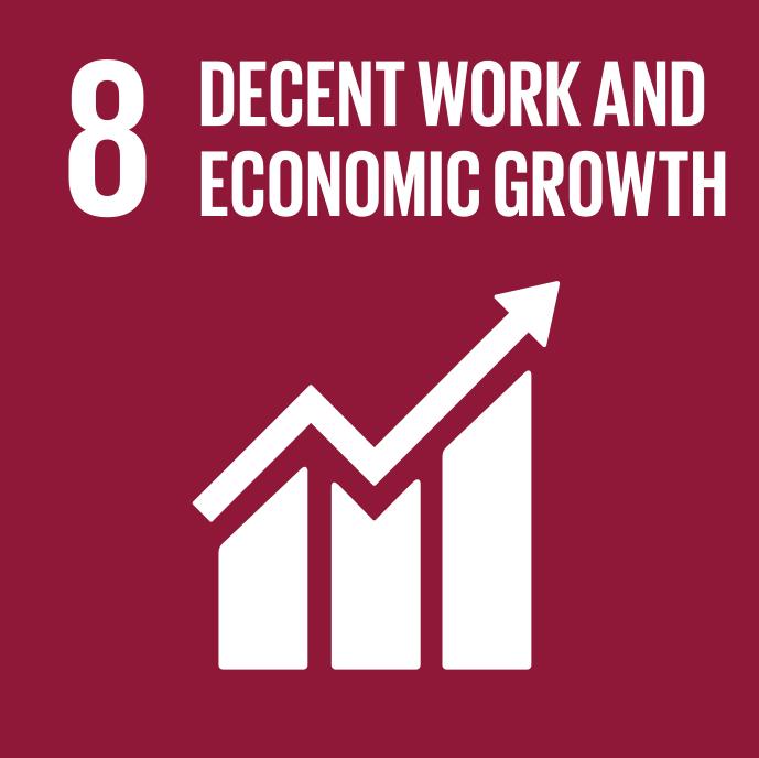 SDG_8.jpg