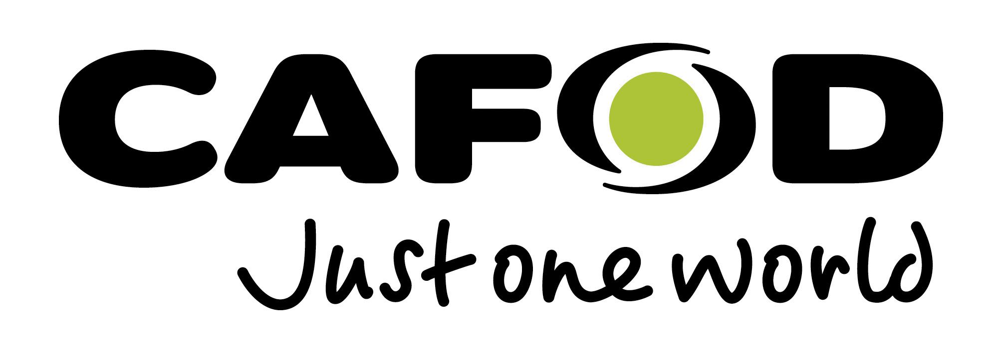 SDG-17---CAFOD-logo.jpg