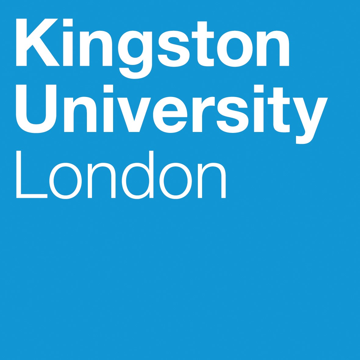 - The Kingston Economics BSc is a pluralist program which prepares students for policy roles, co-organized by the infamous Steve Keen.