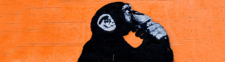 Imagine Economics as an Evolutionary Science