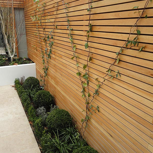 Garden Fencing - Extensive range of fencing and trellis panels and garden gates.