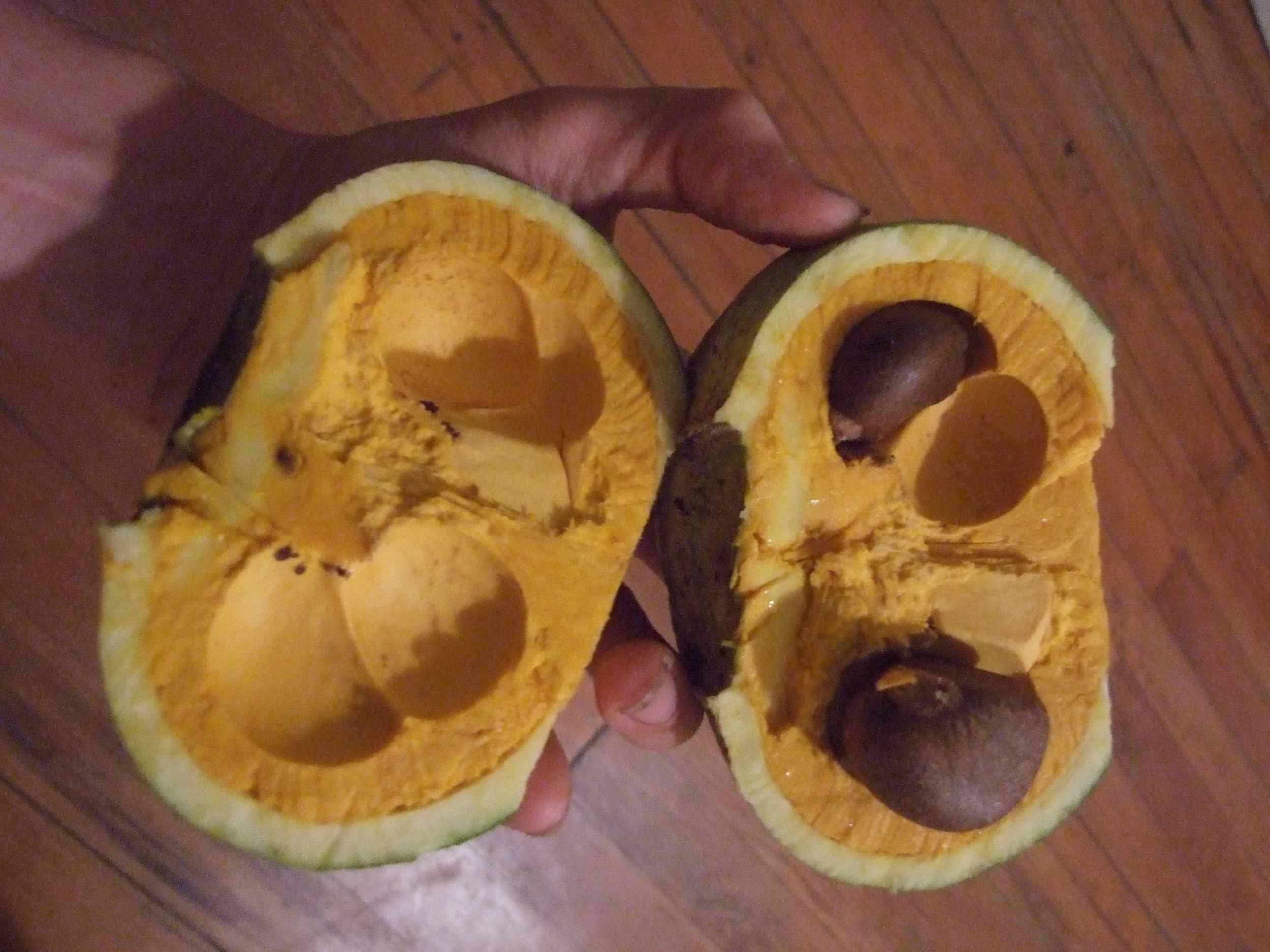 g-superba-fruit-c-section.jpg