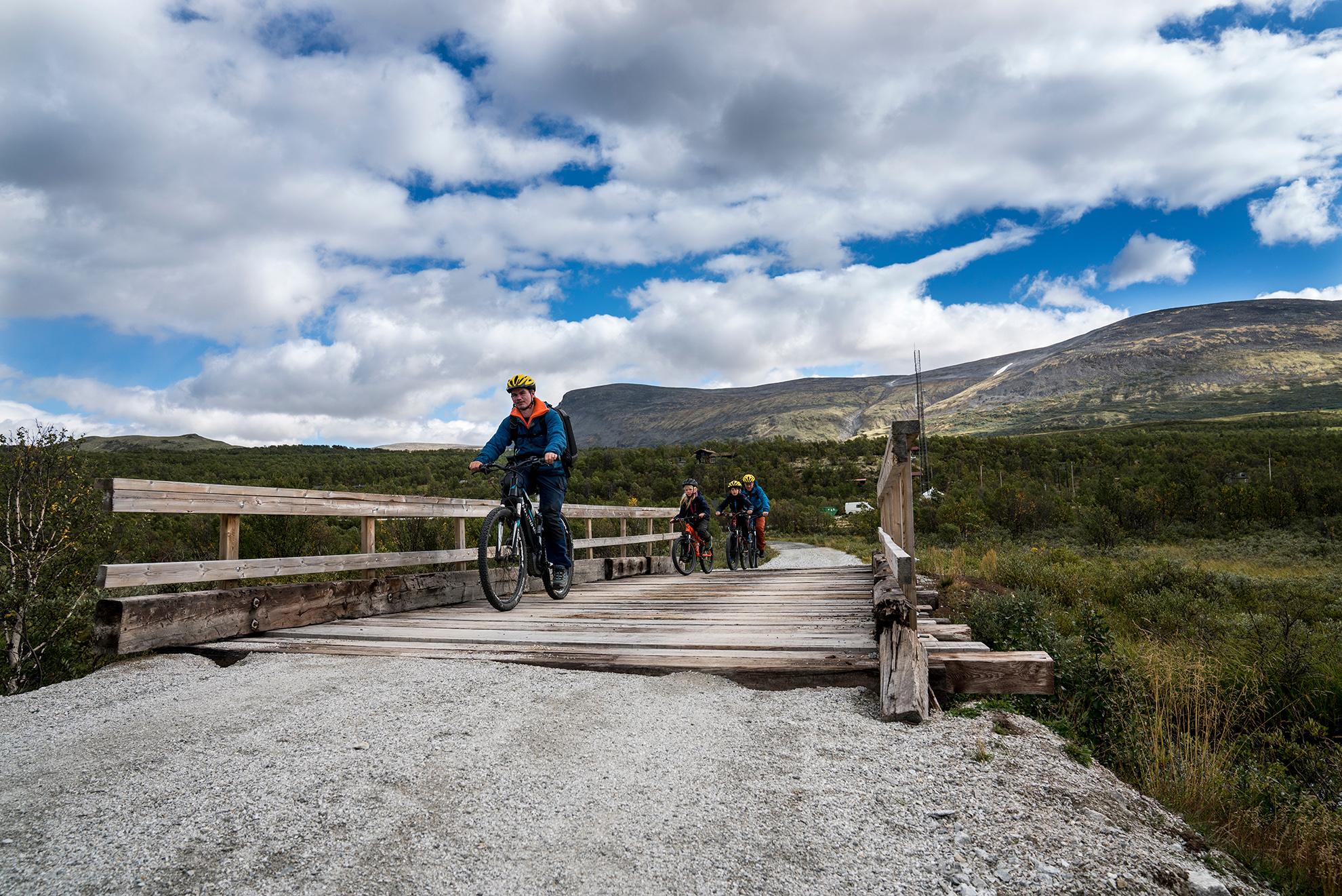 Nasjonalparkvegen - I 2017 åpnet Nasjonalparkvegen over Dovrefjell, en tur- og sykkelveg mellom Dombås og Hjerkinn. Med denne kan syklister og andre turgåere nyte naturen uten å ferdes langs E6.Vegen er en del av rundturen «Tour de Dovre», et nytt produkt som har fått mye oppmerksomhet og pressedekning de siste to årene.