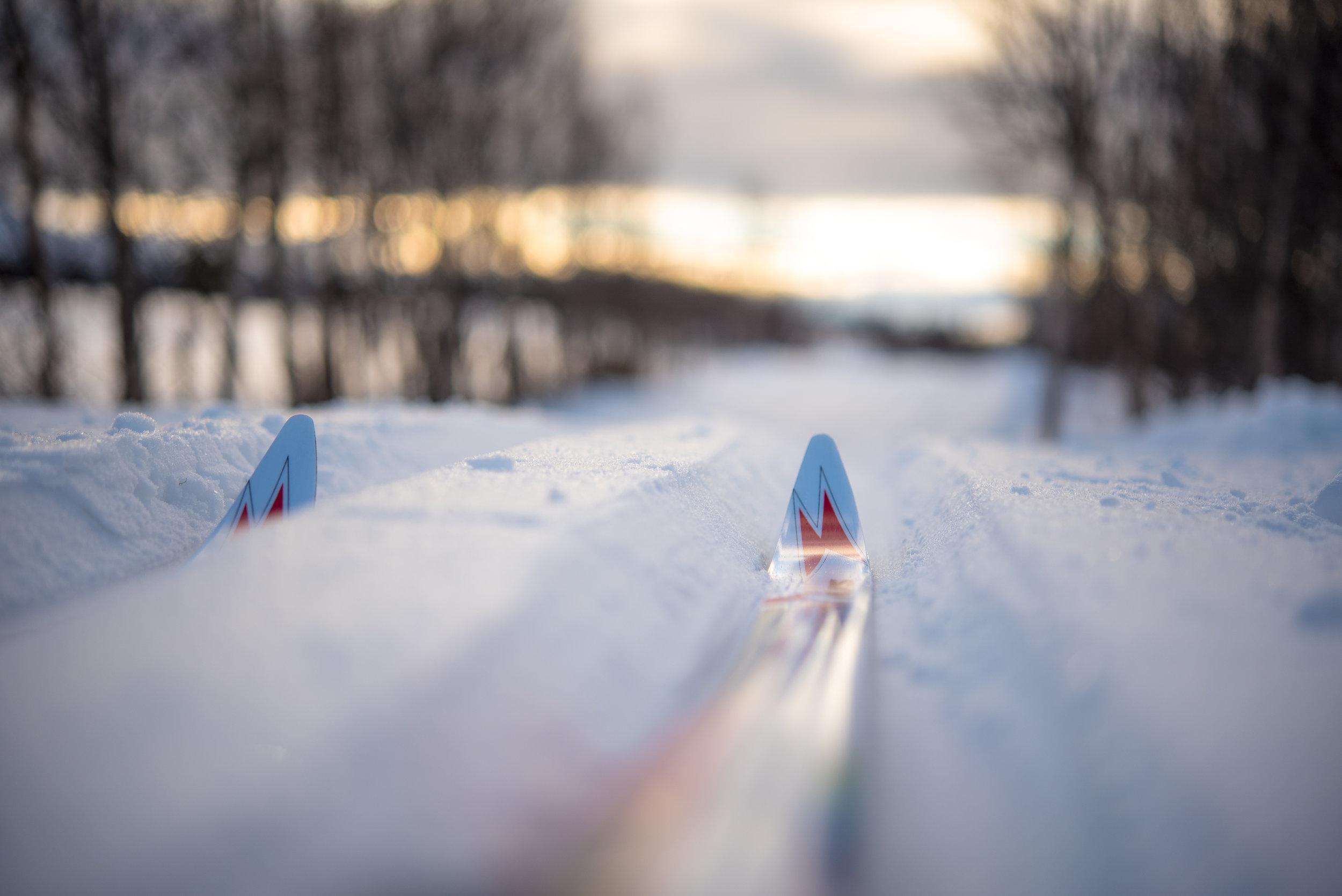 Skiløyper like ved - Langrennsløypene om vinteren går fra Dombås til Hjerkinn når forholdene ligger til rettet. Kjernen av løypenettet går fra stadion på Dombås og innover fjellet, til Furuhaugli. Vi har mange dagsgjester som nyter en vaffel og en kaffe under skituren om vinteren. Vi har også hatt gjester som har vært på treningssamlinger på den godt utbygde Dombås skiarena.Høysesongen er om sommeren og høsten, men det er en økning i gjester om vinteren.