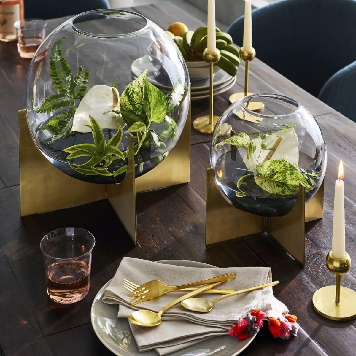 I love these terrariums from West Elm!
