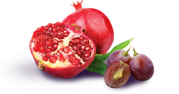Pomegranate + Grape Seed Extracts