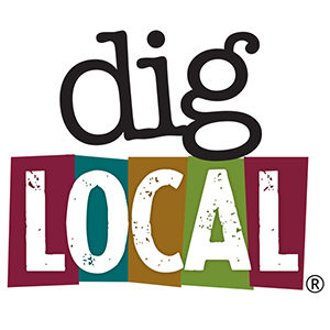 Dig Local.png