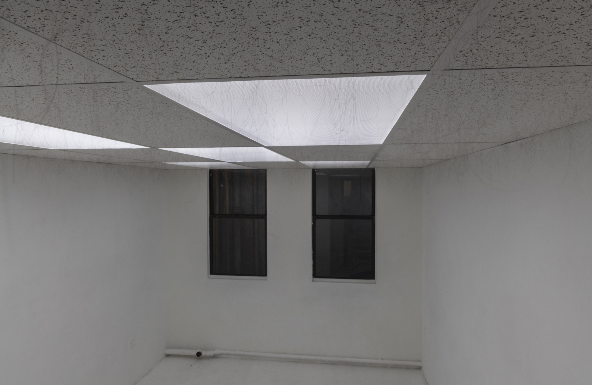 Anagen , 2018–19. Armstrong ceiling tiles in dropped ceiling in gallery, human hair, glue. 86 x 117 x 203 inches (approximately).