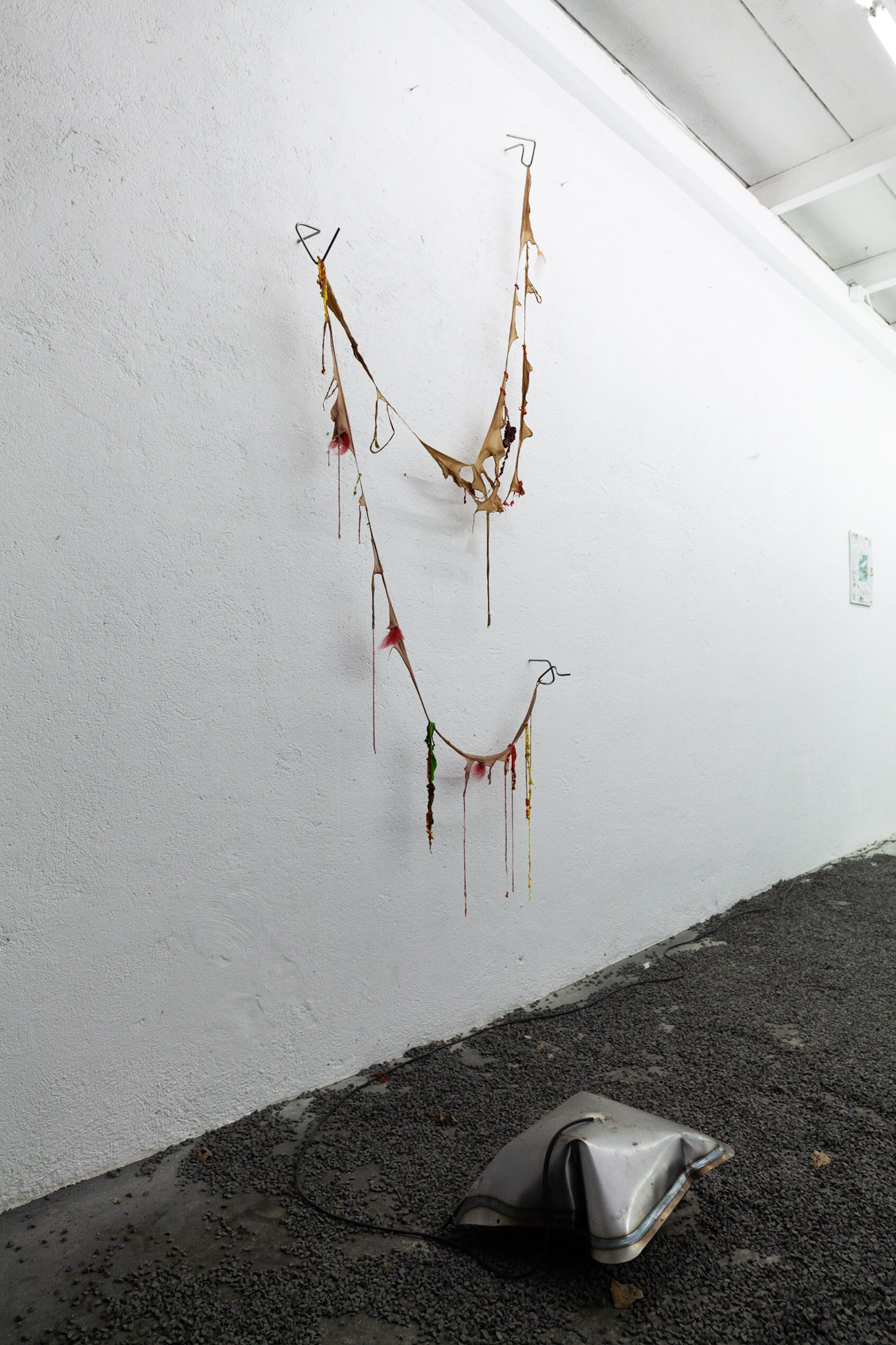 Claire van Lubeek, installation view.