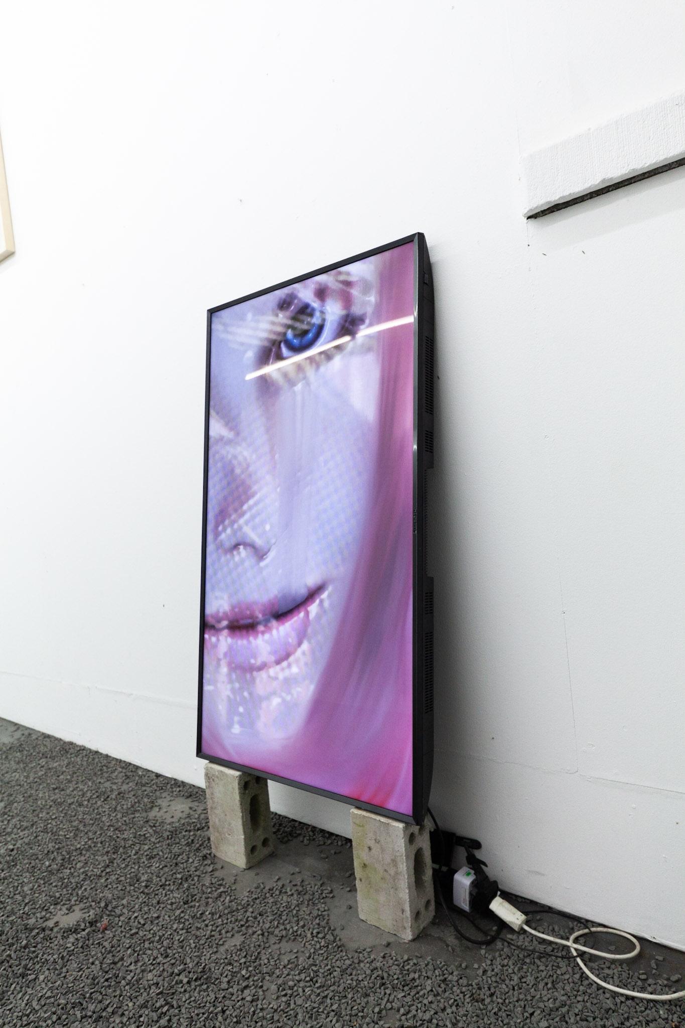 Theodore Darst, installation view.