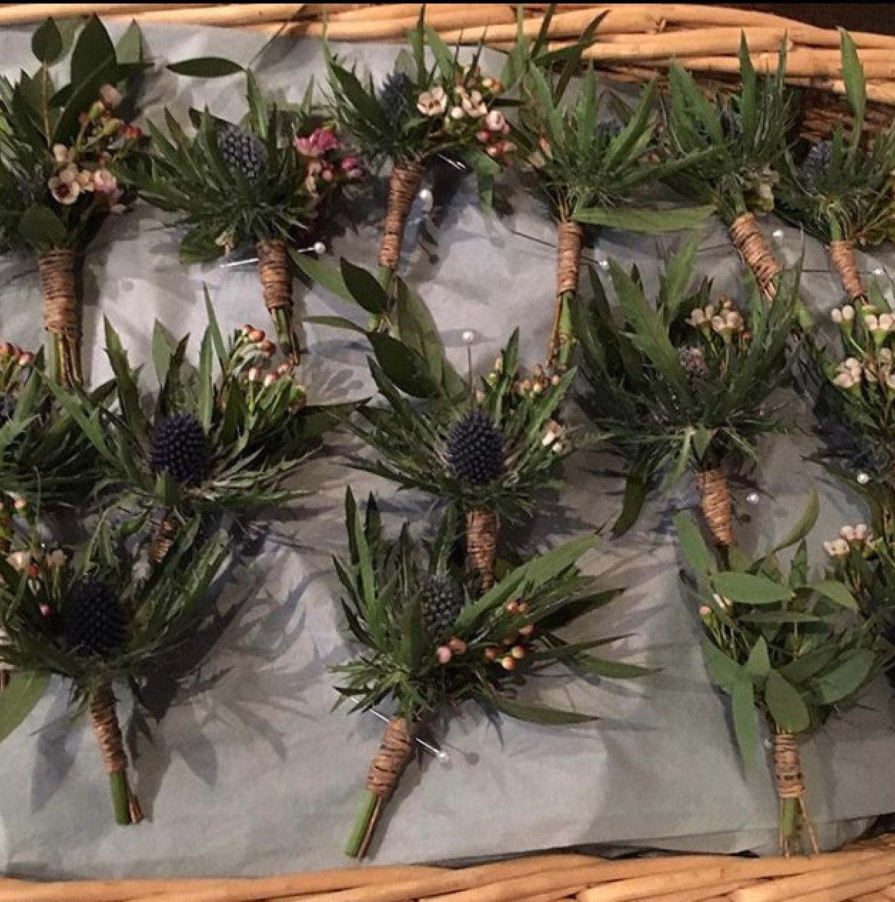 eryngium and wax flower buttonholes