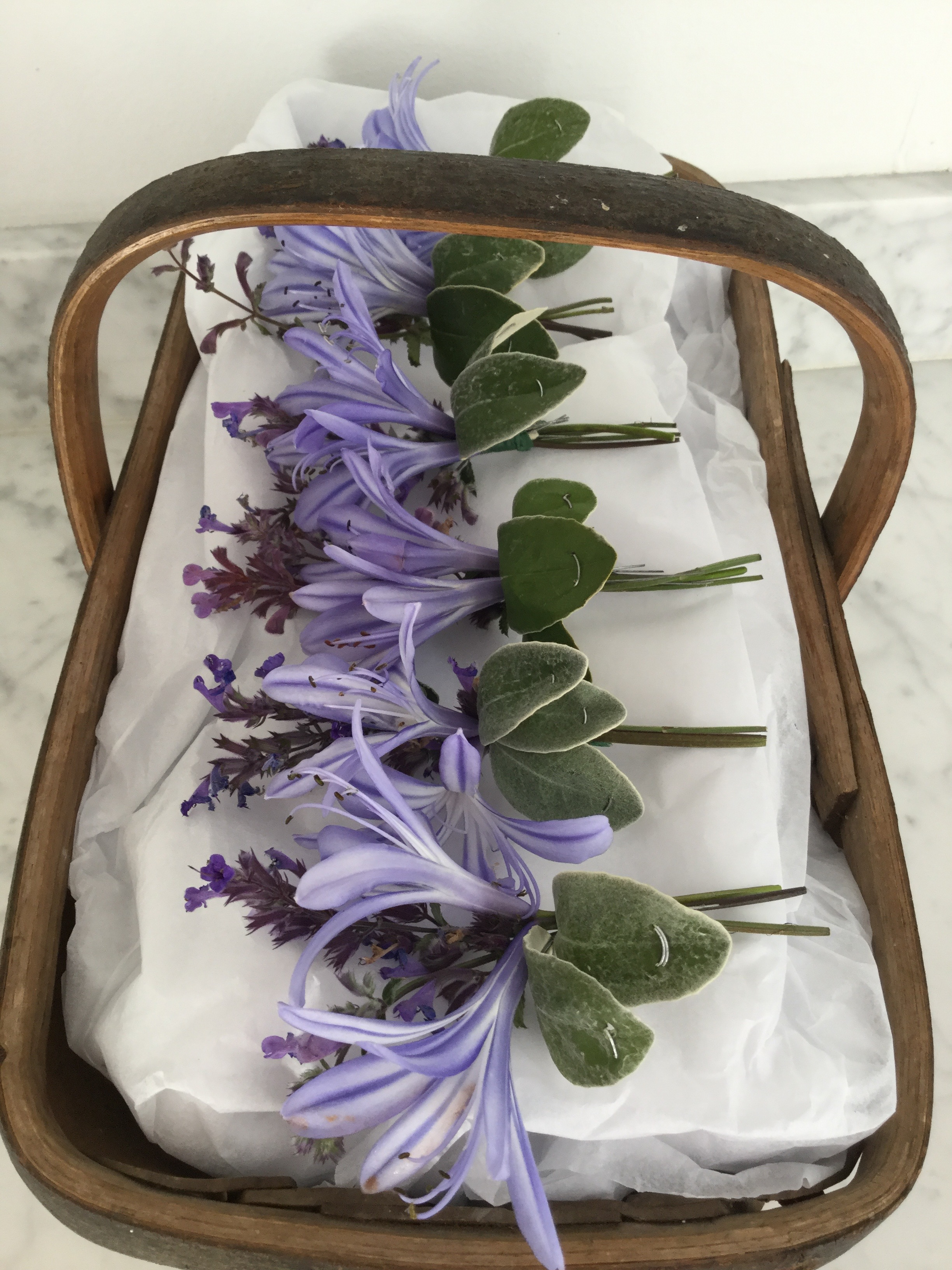 agapanthus and hyssop buttonholes