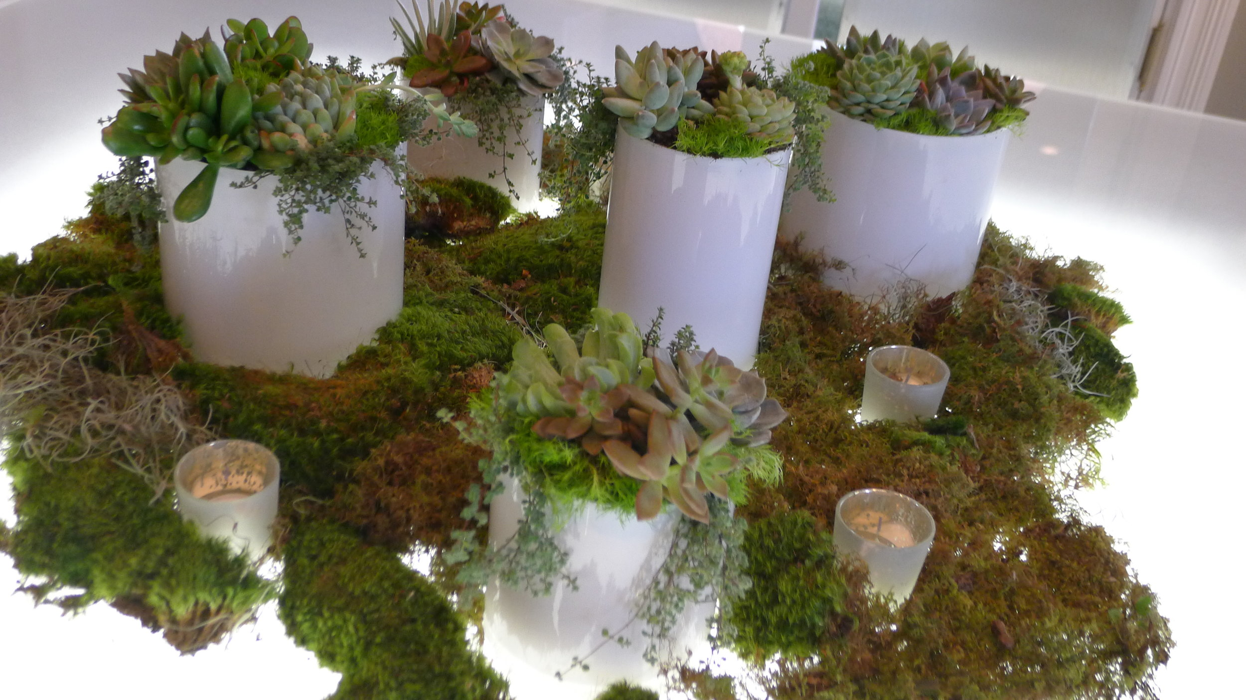 succulent tablescape, illuminated tables, savannah, usa