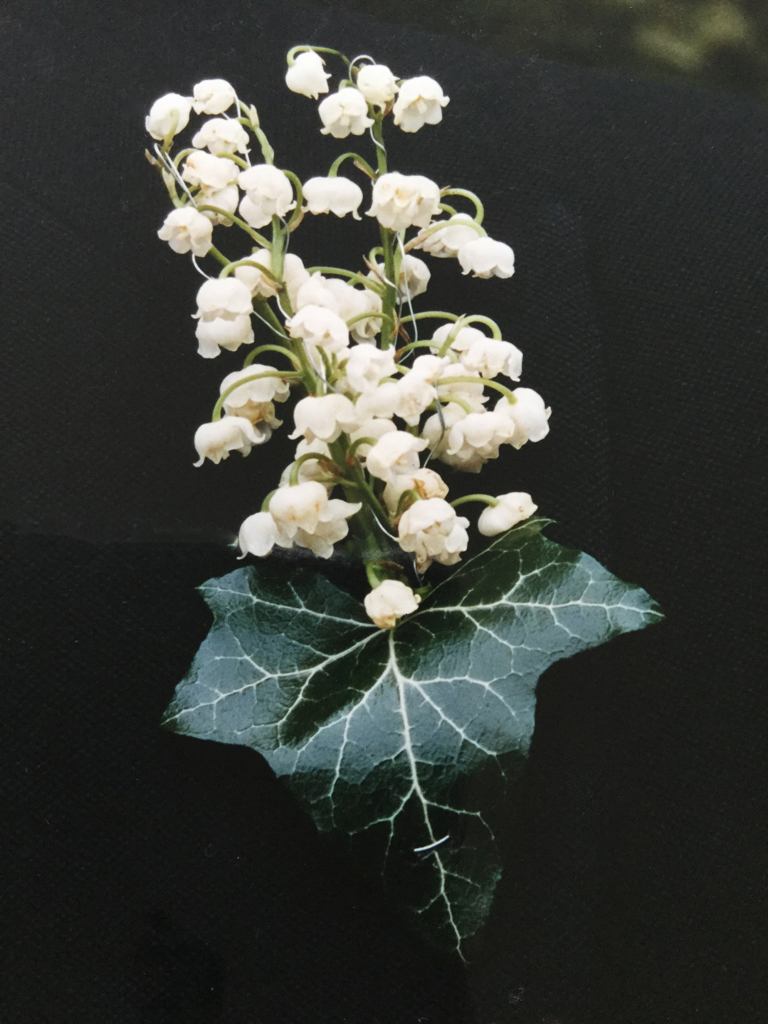 buttonhole lily of the valley and ivy