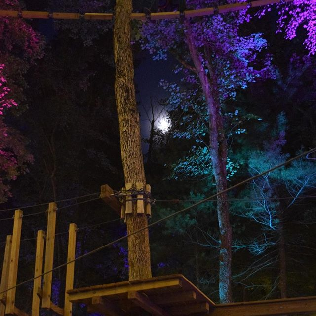 Join us this Saturday 8/10 for Glow in the Park! 🌟Our Glow in the Park events feature music, colorful up-lights and a great vibe in the trees! 🌌 ⁠ ⁠ Event is from 6-9:30pm. Last ticket sale 7pm. Reserve your tickets now! 🌲Link in Bio. ⁠