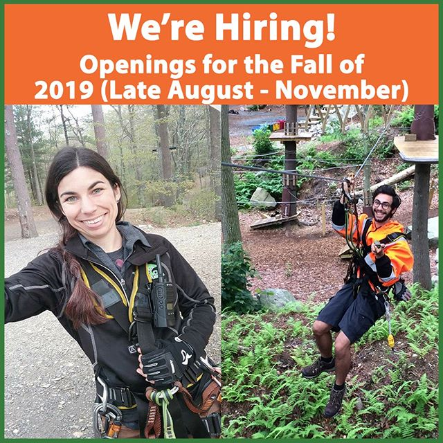 We're hiring for the position of Trail Monitor for the Fall of 2019! Only applicants with significant morning availability Monday through Friday will be considered.⁠ 🌲Learn more and apply right online. Link in Bio. ⁠ ⁠