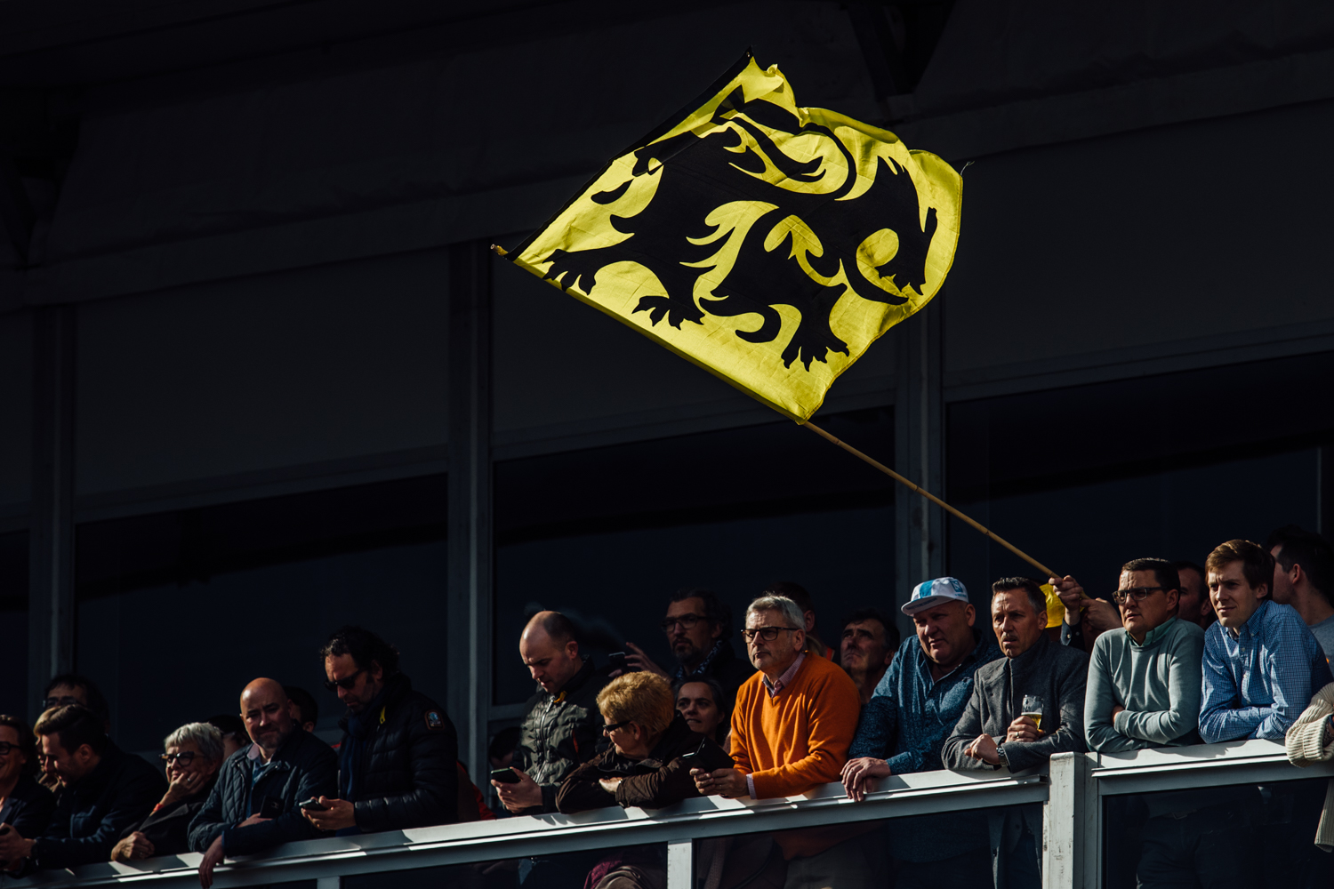 Lion of Flanders Flag