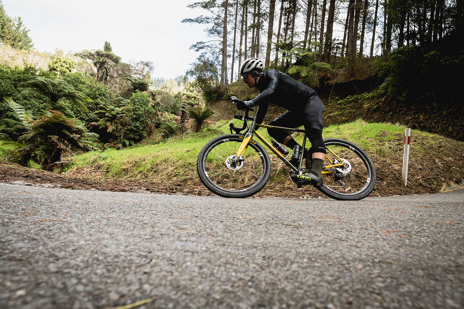 """""""Today's steel frame bikes embody the perfect balance of ride quality, durability, repair-ability, environmental sensitivity, design flexibility, and aesthetics."""" -"""