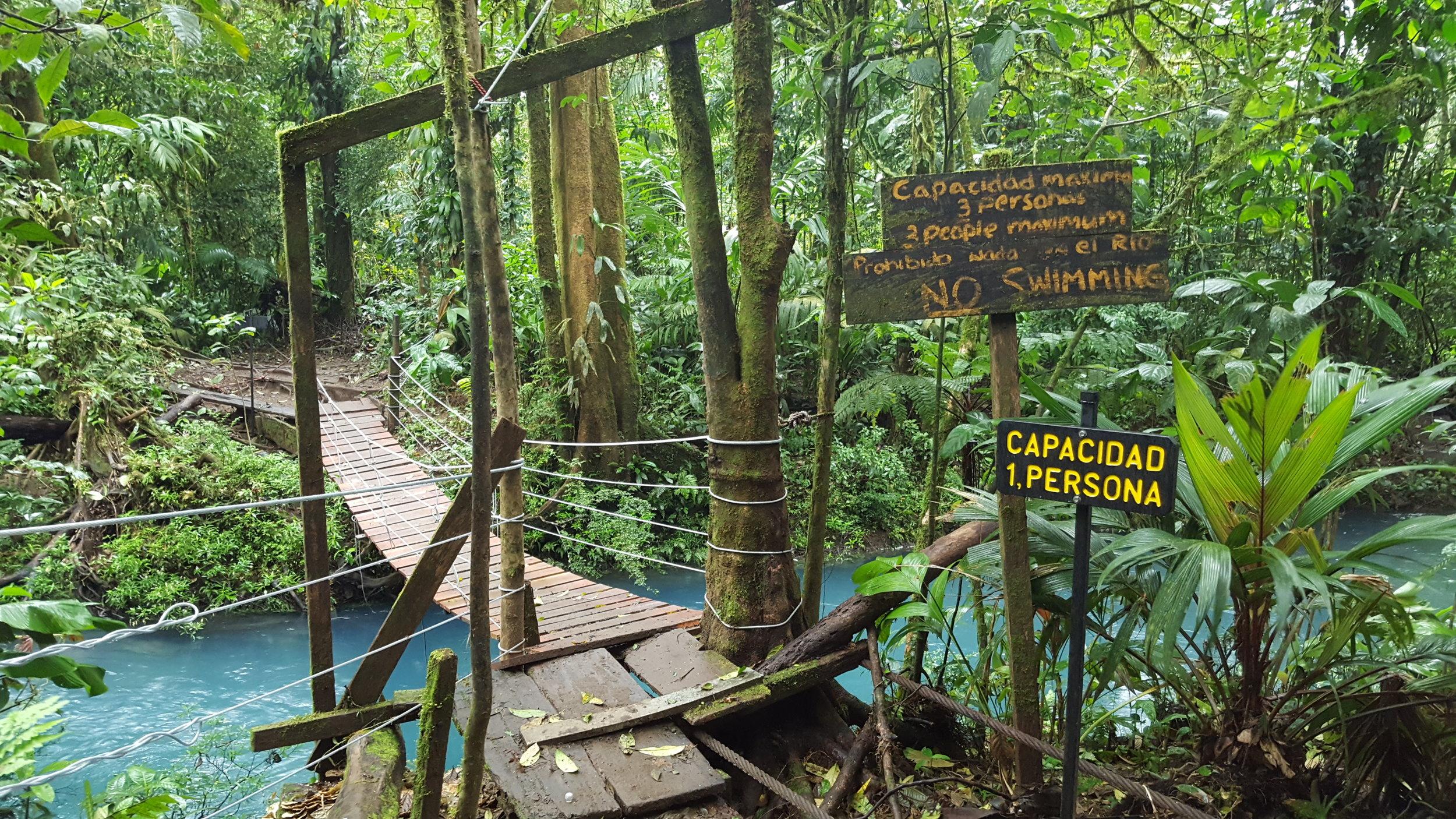 11 - Tenorio national park Rio Celeste river - swinging bridge.jpg
