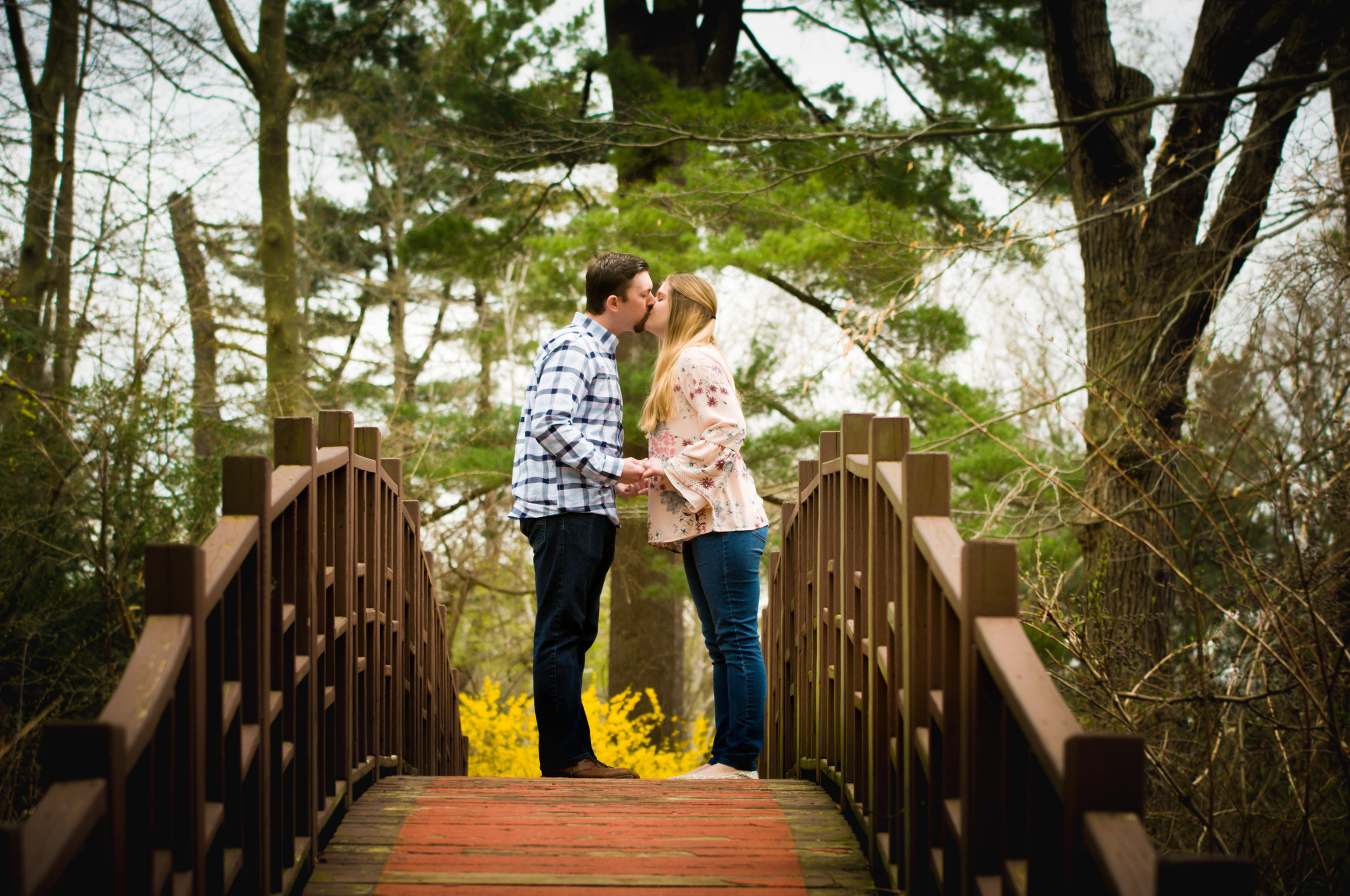 CarrieWestonStudios_Engagement_Wedding_Portraits_NY_Photography_Photographer-2.jpg
